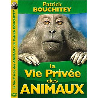 patrick bouchitey la vie prive des animaux