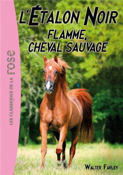 L'Étalon Noir 10 - Flamme, cheval sauvage