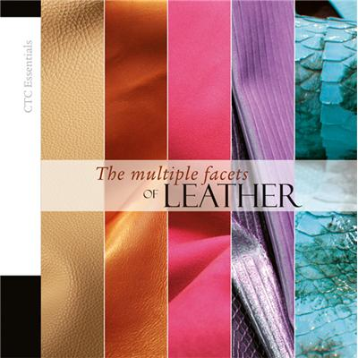 The multiple states of leather