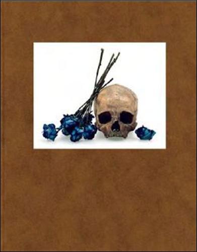 David Bailey : flowers skulls contact