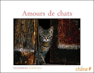 Calendrier perpétuel Amour de chats