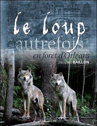 Le loup en foret d'Orléans