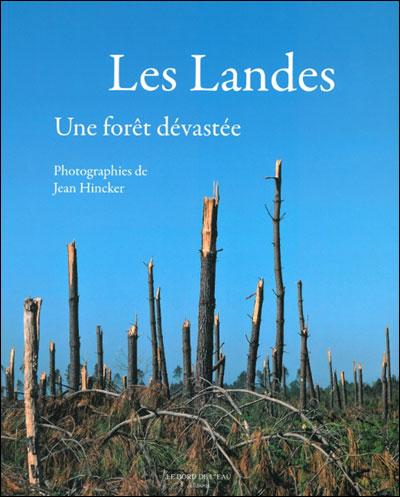 Les Landes, une forêt dévastée