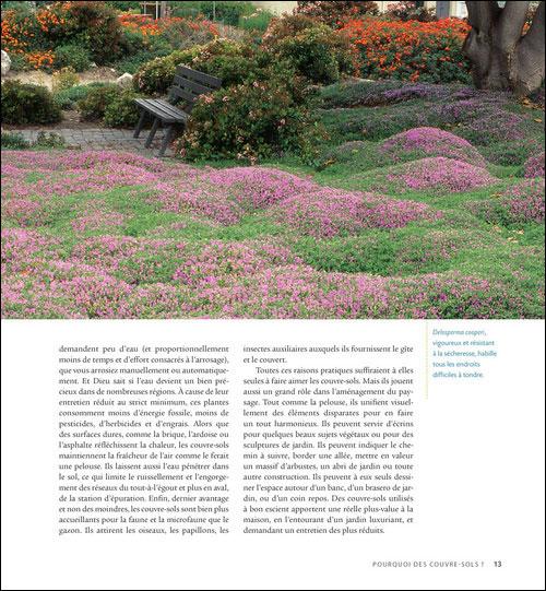 Plantes couvre-sol : des idées originales pour un jardin plein de ...