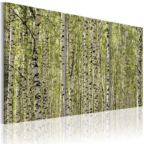 Tableau | Forêt de bouleaux | 60x40 | |