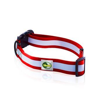 Collier fluorescent pour chien en nylon - boucle attache rapide, réglable  de 23 à 36 cm - Rouge - Colliers, harnais et laisses pour chien - Achat    prix   ... a3287410ff6