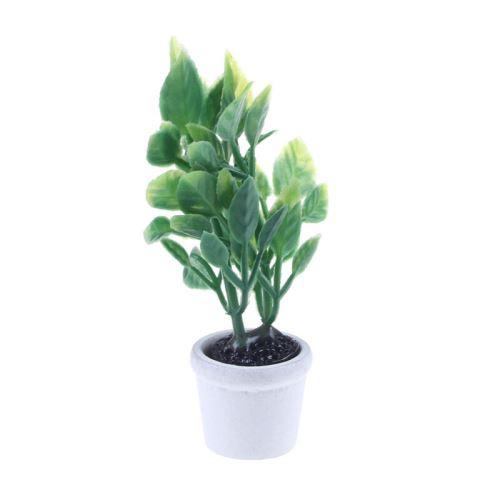 1 12 Miniatura Plante Verte Maison De Poupee Decoration Meubles Accessoires De Bricolage Accessoire Poupee Achat Prix Fnac