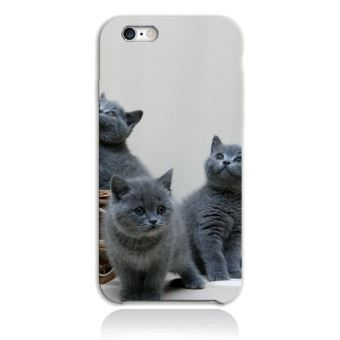 coque iphone 6 plus chaton