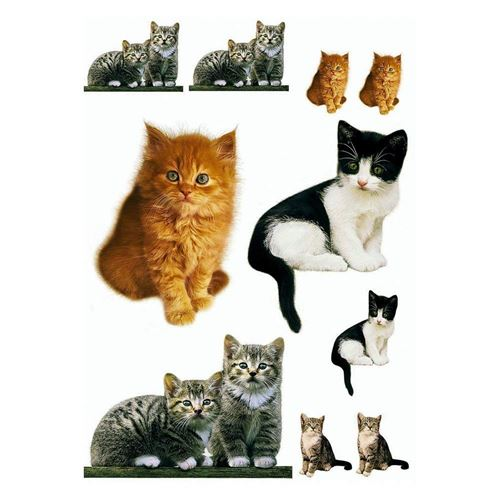 DecoSoon Stickers Chatons (70 x 50 CM)