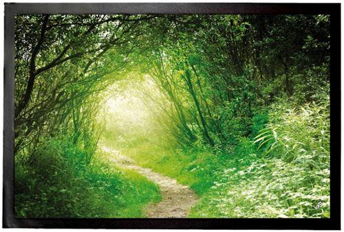 Forêts Paillasson Essuie-Pieds - Forêt Verte, Sentier Lumineux (60x40 cm)