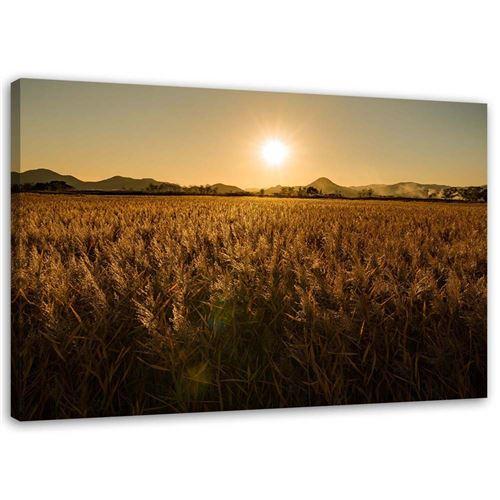 Tableau sur toile Image Cadre moderne Canevas Coucher de soleil Corée Paysage 60x40