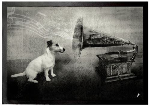 Chiens Paillasson Essuie-Pieds - His Master's Voice, Jack Russell Terrier (50x70 cm)