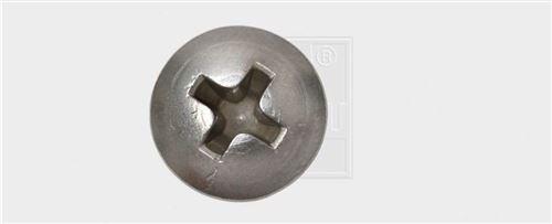 SWG Tôle Vis en acier inoxydable A2 DIN 7983 2,9 x 9,5 mm (20 pièces)
