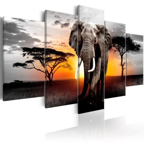 Tableau - Elephant at Sunset .Taille : 200x100