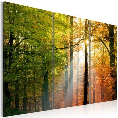 Artgeist - Tableau - Forêt d'automne 60x40