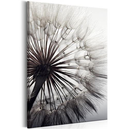 Tableau - Pure Delicacy - Décoration, image, art | Fleurs variées | 40x60 cm |