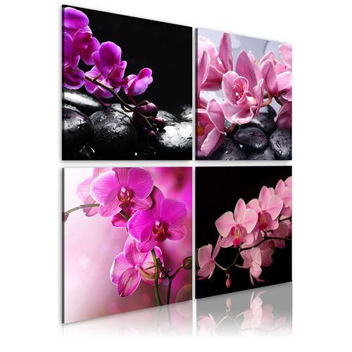 Tableau - Orchidées plus belles que jamais - Décoration, image,