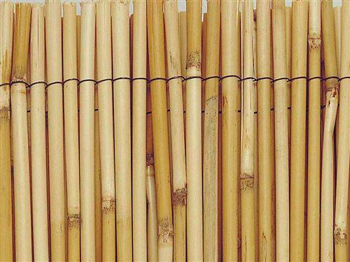 Paillon de roseaux entiers REEDCANE - 1 x 5 m