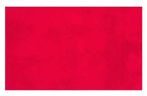 Spirella 10.15589 True Tapis de Bain Rouge 55 x 65 cm