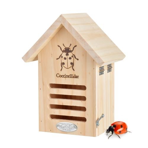Maison à insecte pour coccinelle