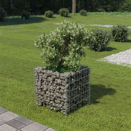 Jardinière à gabion Acier galvanisé 50 x 50 x 50 cm