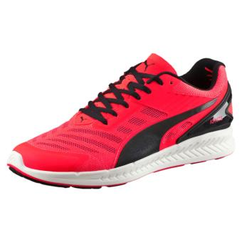 Vif Puma Ignite Chaussures Et Rouge V2 rIwI5fq