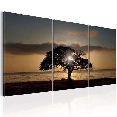 Tableau - Extraordinary Nature - Décoration, image, art | Paysages | Arbres | 120x60 cm |