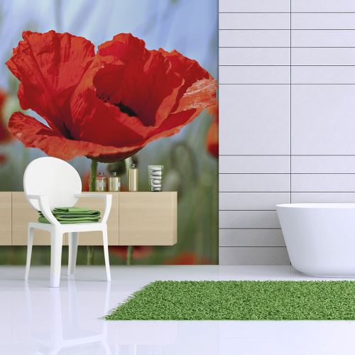 Papier peint - Coquelicots, couleur rouge intense - 250x193 -