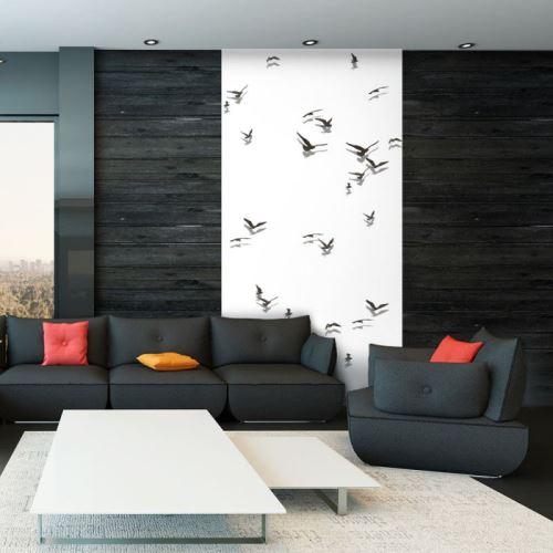 Papier peint - Free Birds .Taille : 50x1000