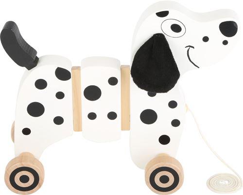 Dalmatien À Tirer