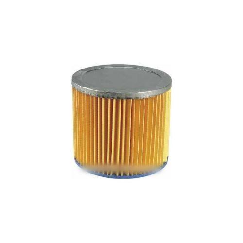 Cartouche filtrante s21 pour aspirateur aquavac - 5157860