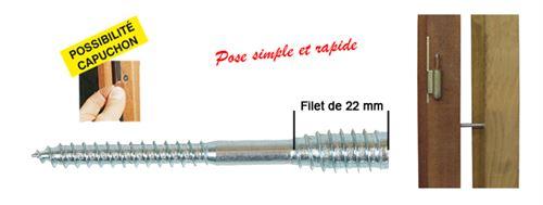 Boîte 100 Vis top roc bois ING FIXATIONS - 6x100 mm - Fil.22 mm + chevilles - A430020