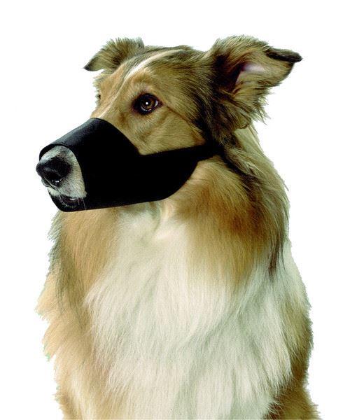 Muselière en nylon noir taille l - golden retriever dobermann labrador