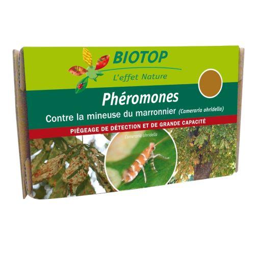Phéromone mineuse du marronnier x2