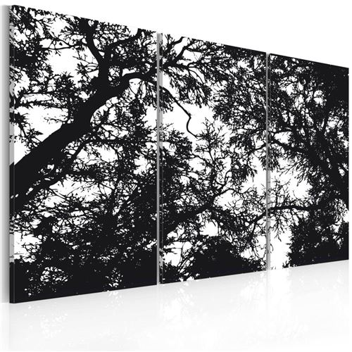Artgeist - Tableau - Forêt dense 90x60