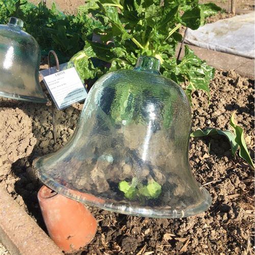 L Heritier Du Temps Cloche A Melon De Jardin Ou Cloche Victorienne En Verre Translucide Recycle 30x38x38cm