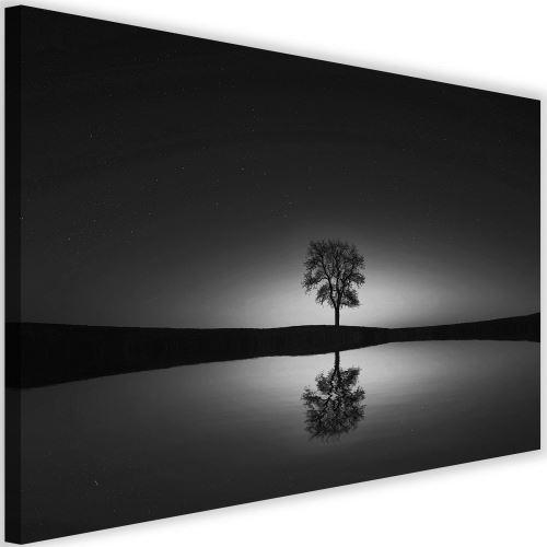 Impression sur toile Tableau Image moderne Canevas Arbre Ciel étoilé 2 90x60