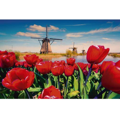 Puzzle 1000 pièces : moulins et tulipes king puzzles
