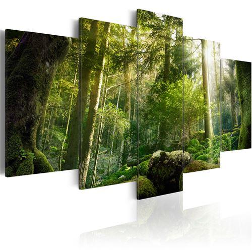 Tableau - Beauté de la forêt - Décoration, image, art | Paysages | Forêt |