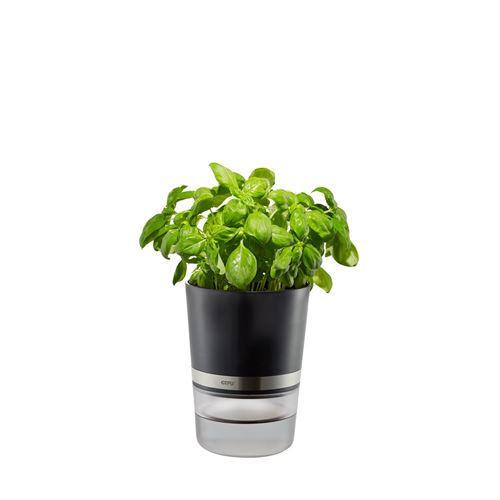 Pot d'herbes aromatiques BOTANICO Gefu ABS Argent