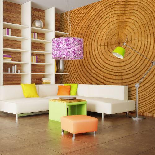 Papier peint - Tronc d'arbre - 250x193 - -