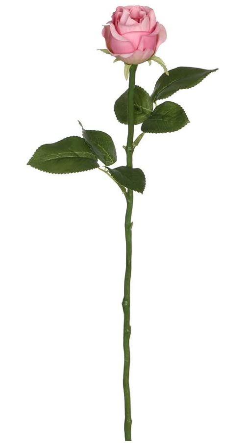 Rose 45 cm