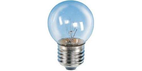 Ampoule de four Barthelme E27 25 W 1 pc(s)