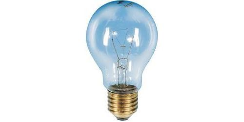 Ampoule de four Barthelme E27 60 W 1 pc(s)