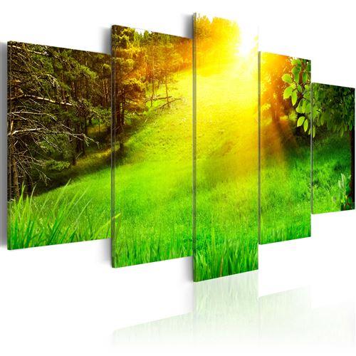 Tableau | Forêt et soleil | 200x100 | XXL | Paysages | Forêt | |