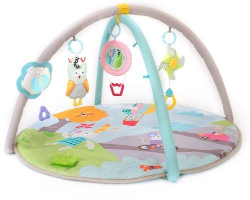 Taf Toys babygym Musical Naturejunior 90 cm 4 pièces