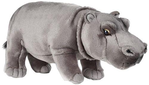 National Géographic - 770722 - Hippopotame