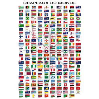 Drapeaux Du Monde Poster Noms Des Pays Et Capitales En Francais 91x61 Cm Poster Affiche Enroule Top Prix Fnac