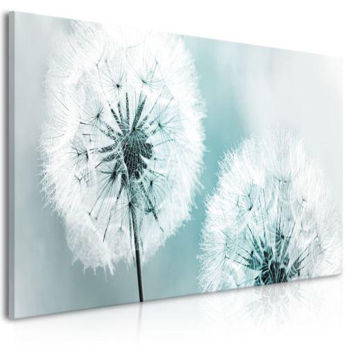 Tableau - Fluffy Dandelions (1 Part) Blue Wide .Taille : 100x45