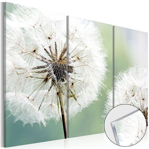 Tableau sur verre acrylique - Fluffy Dandelions [Glass] - Décoration, image, art  